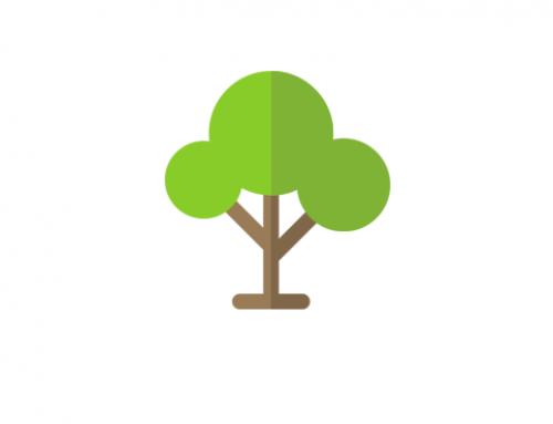 Nachhaltigkeitsbericht & CSR-Reporting