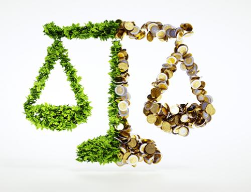 Umweltbilanz erstellen