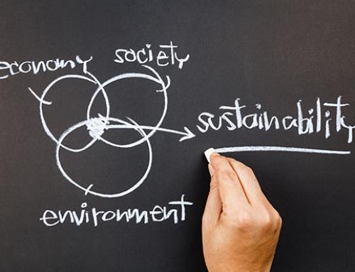 Nachhaltigkeitsberatung